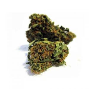 acdc light cannabis