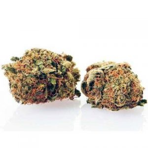 agent orange light cannabis