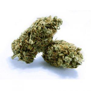 blue dream light cannabis